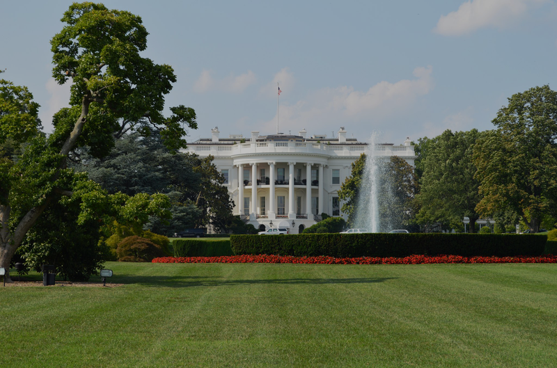 white-house-sunny-day.png